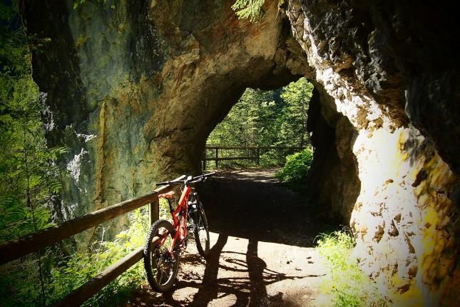 Tracks & trails.