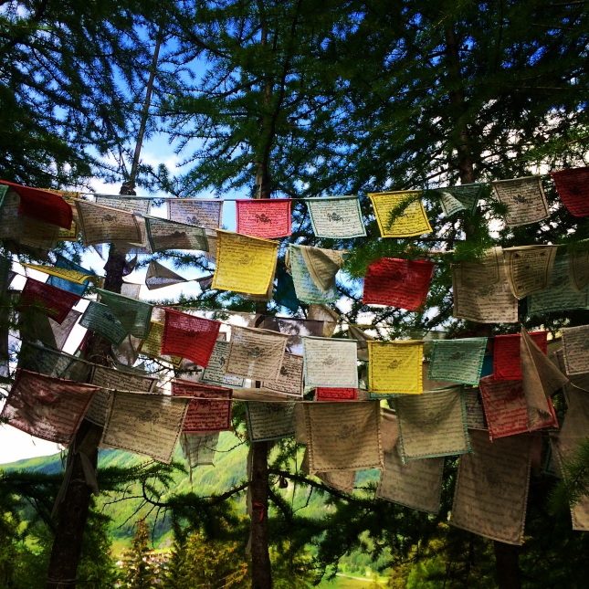 Peaceful prayer flags in the forest.